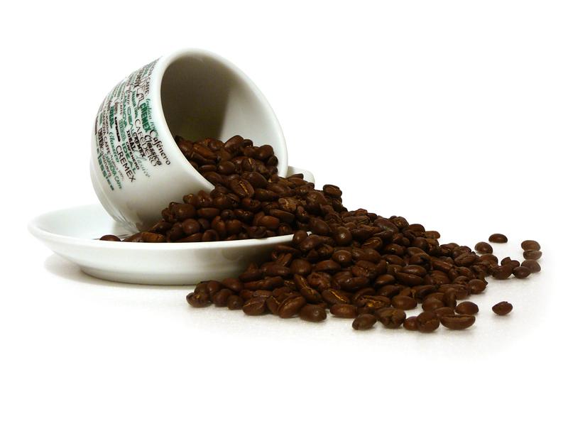 pianta caffè